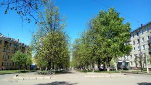 Цветущая весна в Кирове